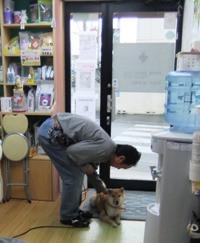 Hibi_15_20120328_1