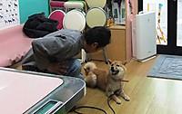 Hibi_15_20120328_6