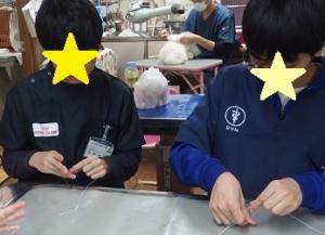 Syokutai_midori_3-002