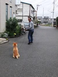 Hibi_28_20120606_7